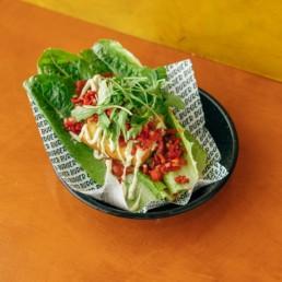 Tofu Chicken Bunnuce